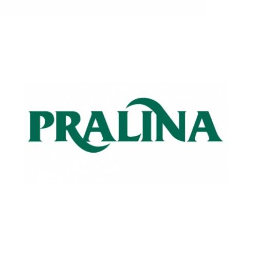 PATE' DI FUNGHI BIO - PRALINA
